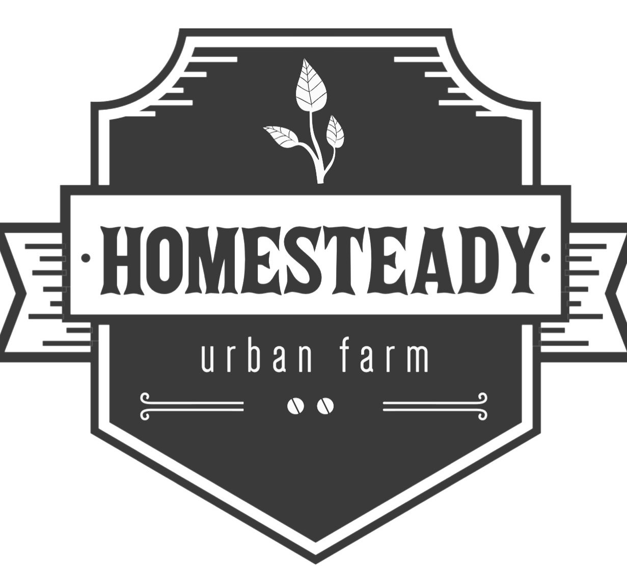 Homesteady Urban Farm